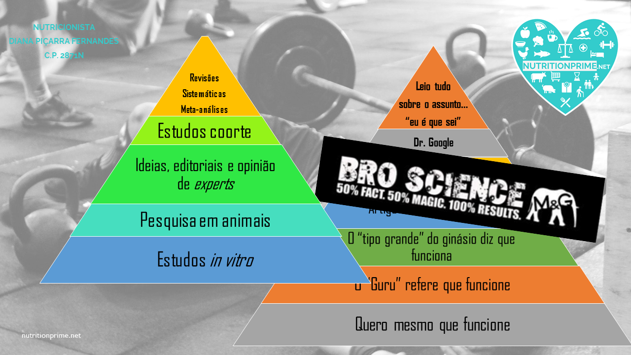 Diapositivo13