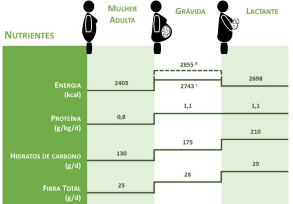 Alimentação e Nutrição na Gravidez: necessidades Energéticas e de Macronutrientes 🍽🤰💙